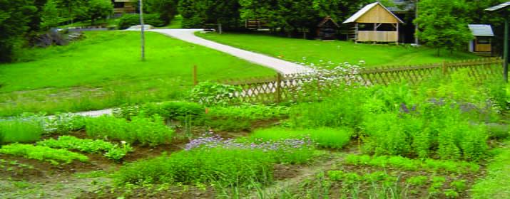 Kmetija Plavica